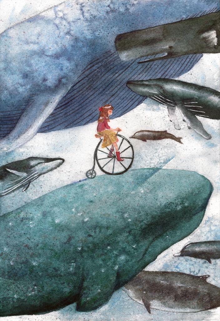 whaleswalesfinal